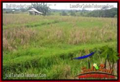 1,450 m2 LAND SALE IN TABANAN BALI TJTB343