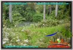 Affordable Tabanan Selemadeg LAND FOR SALE TJTB344