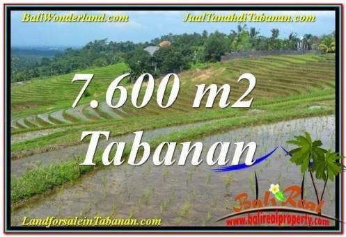 Beautiful 7,600 m2 LAND FOR SALE IN TABANAN TJTB347