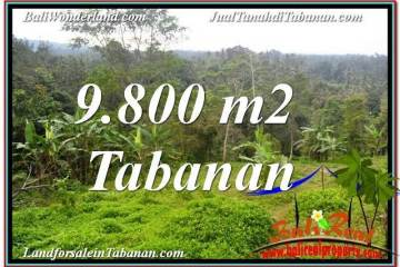 Affordable PROPERTY 9,800 m2 LAND SALE IN Tabanan Selemadeg TJTB350