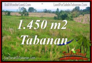 Exotic 1,450 m2 LAND FOR SALE IN Tabanan Selemadeg TJTB343