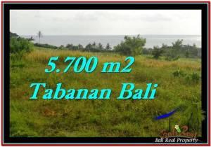 Exotic PROPERTY Tabanan Selemadeg 5,700 m2 LAND FOR SALE TJTB250