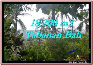 Exotic LAND FOR SALE IN TABANAN TJTB254