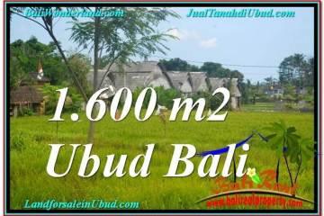 FOR SALE Affordable LAND IN Sentral / Ubud Center BALI TJUB633
