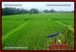 FOR SALE Affordable PROPERTY 400 m2 LAND IN CANGGU TJCG219