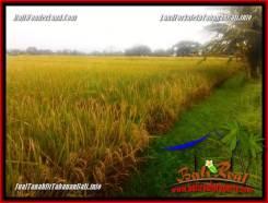 Affordable PROPERTY TABANAN LAND FOR SALE TJTB356