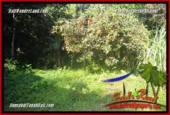Exotic PROPERTY LAND SALE IN TABANAN TJTB361
