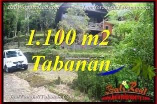 Exotic PROPERTY 1,100 m2 LAND IN Tabanan Bedugul BALI FOR SALE TJTB371