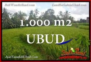 Magnificent PROPERTY LAND SALE IN UBUD TJUB653