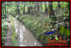 Magnificent 10,400 m2 LAND FOR SALE IN TABANAN Selemadeg Timur TJTB369