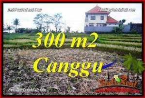 FOR SALE Magnificent PROPERTY 300 m2 LAND IN CANGGU BALI TJCG230