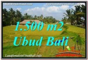 Affordable PROPERTY 1,500 m2 LAND IN UBUD TEGALALANG FOR SALE TJUB668