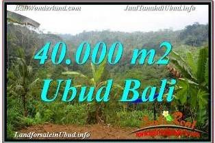 Affordable LAND FOR SALE IN UBUD BALI TJUB679
