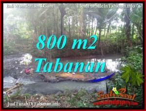 Exotic 800 m2 LAND IN TABANAN SELEMADEG BALI FOR SALE TJTB384