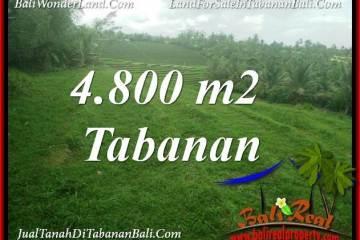 4,800 m2 LAND FOR SALE IN TABANAN TJTB387