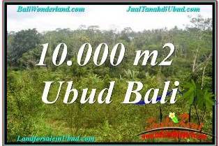Magnificent 10,500 m2 LAND SALE IN UBUD BALI TJUB681