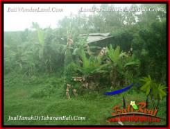Magnificent TABANAN SELEMADEG 4,800 m2 LAND FOR SALE TJTB387