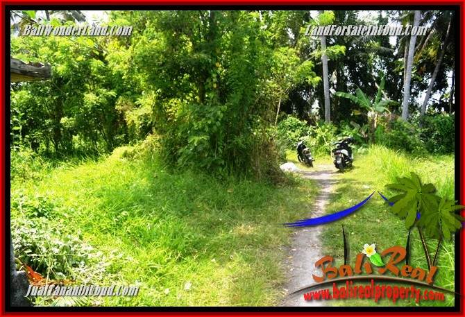 Affordable Property Land sale in Ubud TJUB687