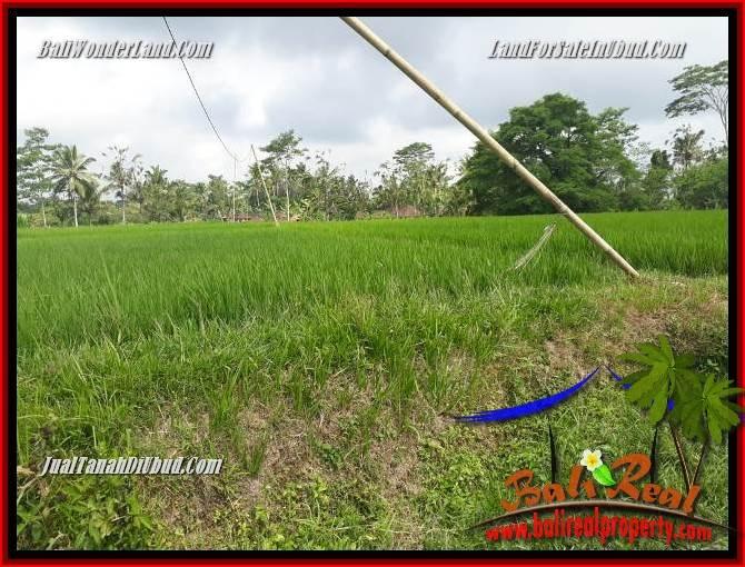 Affordable Property 1,200 m2 Land sale in Ubud Tegalalang TJUB693
