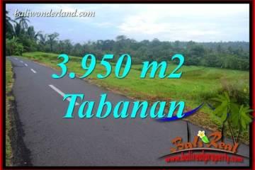FOR sale Beautiful Property Land in Tabanan TJTB402