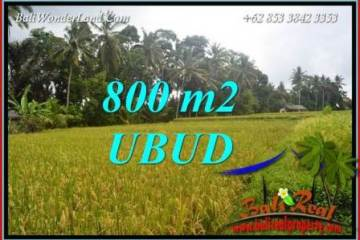 Affordable Land for sale in Ubud TJUB707