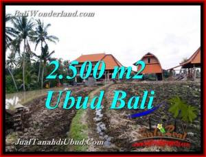 FOR SALE Affordable PROPERTY LAND IN UBUD TJUB772