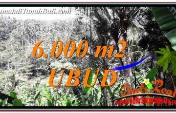 LAND FOR SALE IN UBUD TJUB750