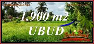 1,900 m2 LAND for SALE in Tampaksiring BALI TJUB811