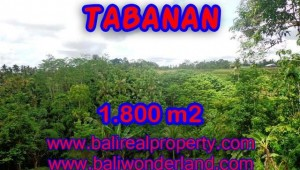 Magnificent Property for sale in Bali, land for sale in Tabanan Bali – TJTB088