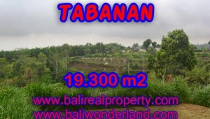 Magnificent Property in Bali for sale, land in Tabanan Bali for sale – TJTB086