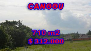 Fantastic Land for sale in Bali, Rice fields view  in canggu Berawa– TJCG110