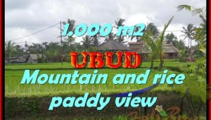 Land for sale in Ubud, Stunning view in Ubud Tegalalang Bali – TJUB424