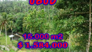Spectacular Property for sale in Bali, land for sale in Ubud Bali  – 15,000 sqm @ $ 106