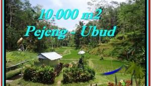 Magnificent PROPERTY UBUD LAND FOR SALE TJUB519