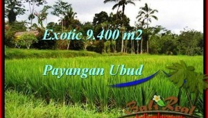 Exotic PROPERTY 9,400 m2 LAND FOR SALE IN Ubud Payangan TJUB526