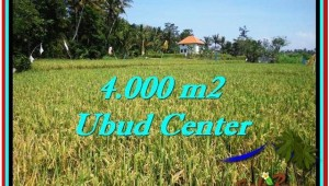 Magnificent PROPERTY 4,000 m2 LAND IN Sentral Ubud FOR SALE TJUB527