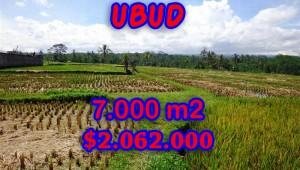 Land for sale in Bali, Fantastic view in Ubud Bali – TJUB247