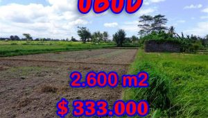 Land for sale in Bali, exotic view in  Ubud Center Bali – TJUB300