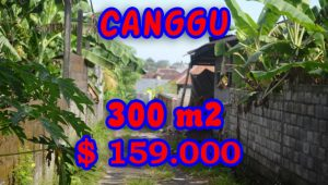 Stunning Property for sale in Bali, land for sale in Canggu Bali  – TJCG107