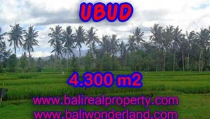 Land in Ubud Bali for sale, Outstanding view in Ubud Center – TJUB370