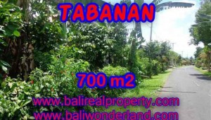 Land for sale in Tabanan Bali, Astounding view in Tabanan Penebel – TJTB090
