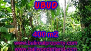Land in Ubud for sale, Outstanding view in Ubud Center Bali – TJUB371