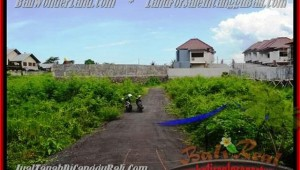 Affordable Canggu Pererenan BALI 335 m2 LAND FOR SALE TJCG142