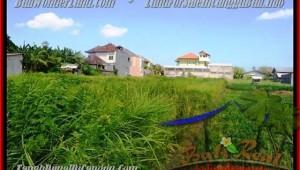 Affordable 770 m2 LAND SALE IN Canggu Kerobokan BALI TJCG148