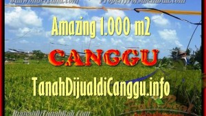 FOR SALE Exotic PROPERTY LAND IN Canggu Kayutulang TJCG154