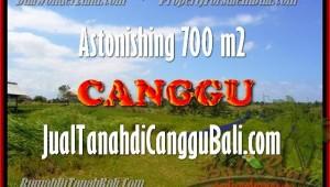 Beautiful Canggu Kayu tulang LAND FOR SALE TJCG155