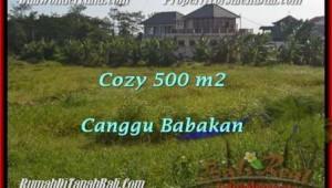 Exotic PROPERTY CANGGU 500 m2 LAND FOR SALE TJCG179
