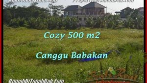 Exotic PROPERTY CANGGU 500 m2 LAND FOR SALE TJCG179