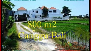 Beautiful PROPERTY 800 m2 LAND FOR SALE IN CANGGU BALI TJCG194