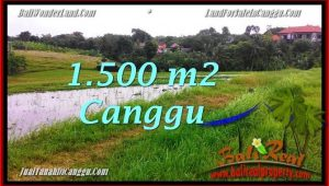 Magnificent PROPERTY CANGGU BALI 1,500 m2 LAND FOR SALE TJCG198